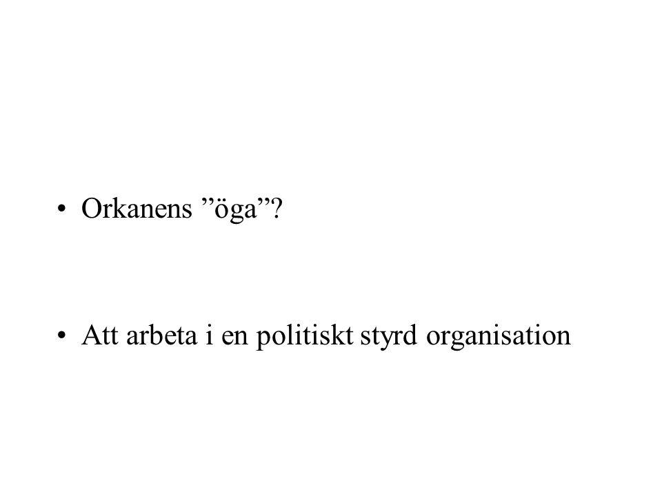 """Orkanens """"öga""""? Att arbeta i en politiskt styrd organisation"""