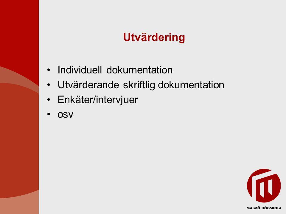 Utvärdering Individuell dokumentation Utvärderande skriftlig dokumentation Enkäter/intervjuer osv