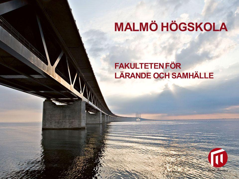 2010 05 04 MALMÖ HÖGSKOLA FAKULTETEN FÖR LÄRANDE OCH SAMHÄLLE