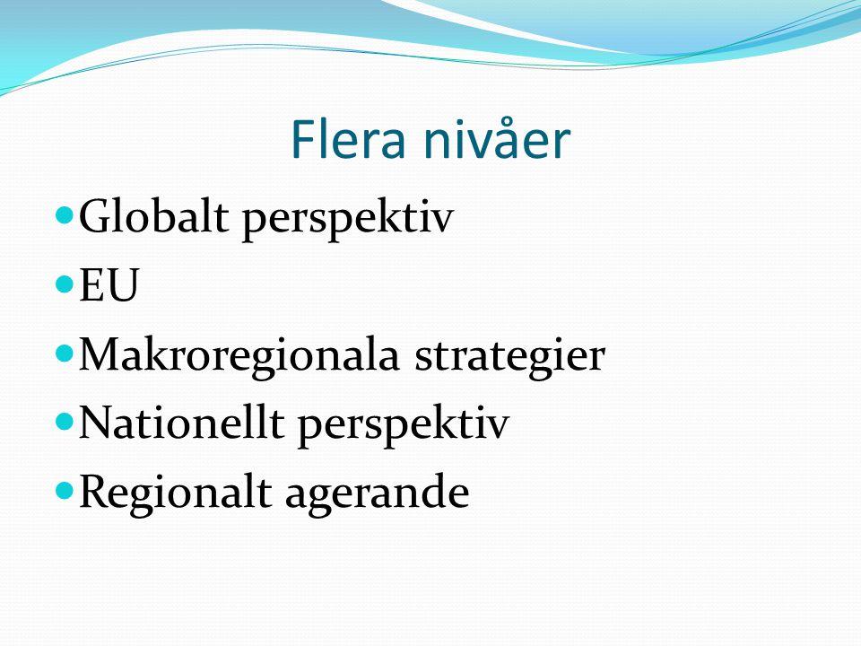 Flera nivåer Globalt perspektiv EU Makroregionala strategier Nationellt perspektiv Regionalt agerande