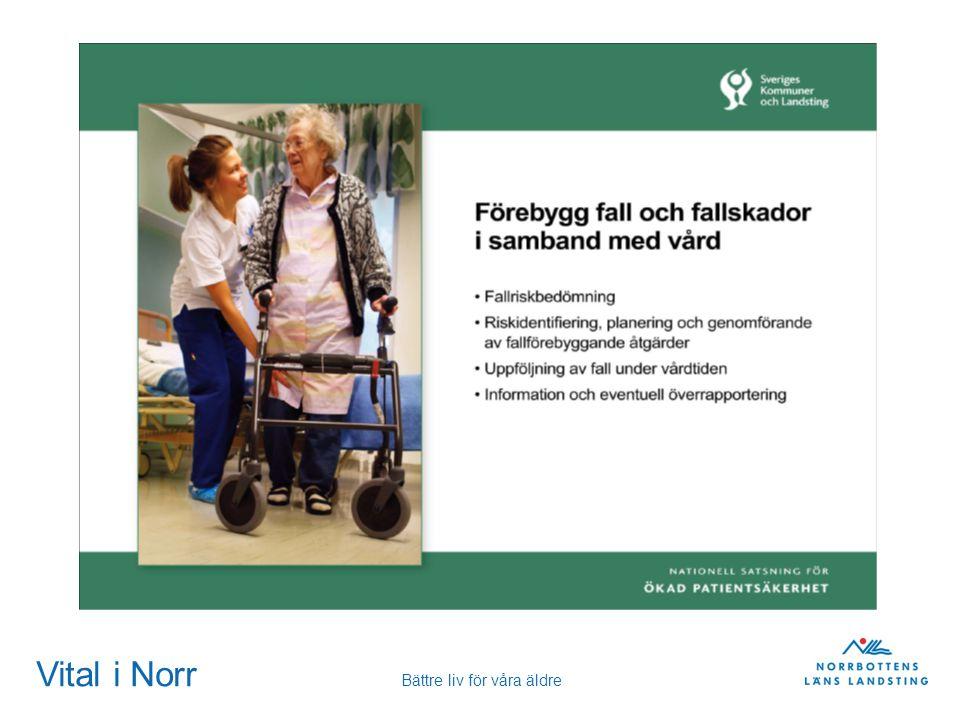 Vital i Norr Bättre liv för våra äldre