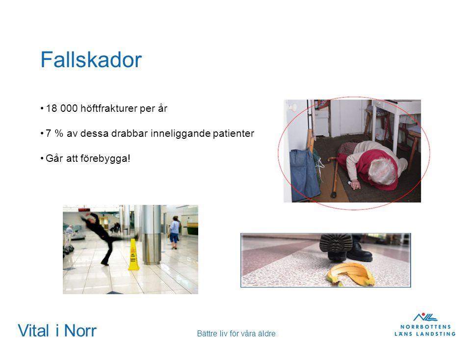 Vital i Norr Bättre liv för våra äldre Fallskador 18 000 höftfrakturer per år 7 % av dessa drabbar inneliggande patienter Går att förebygga!