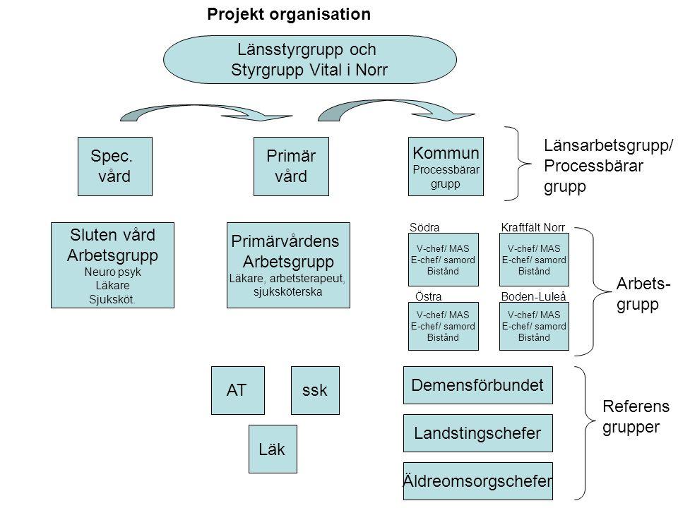 Projekt organisation Spec. vård Primär vård Kommun Processbärar grupp V-chef/ MAS E-chef/ samord Bistånd AT Länsarbetsgrupp/ Processbärar grupp Länsst