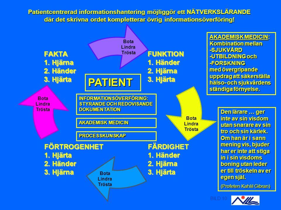 BILD 10 Patientcentrerad informationshantering möjliggör ett NÄTVERKSLÄRANDE där det skrivna ordet kompletterar övrig informationsöverföring.