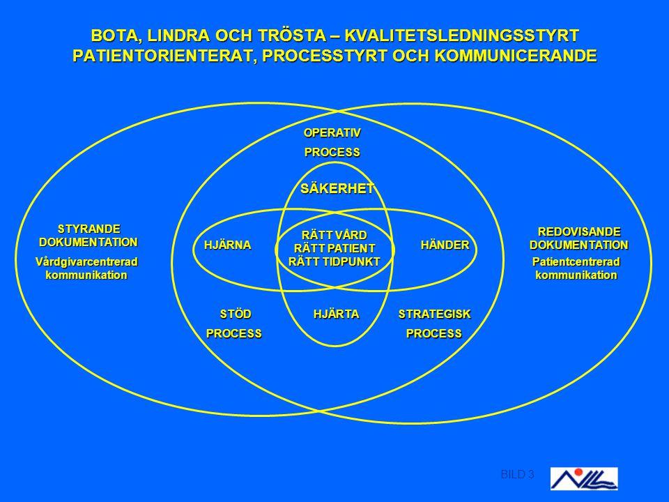 BILD 4 Praktisk nytta av standarden.Definitioner.