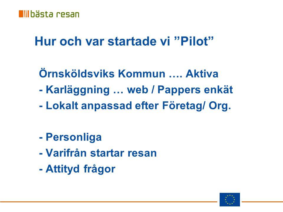 """Hur och var startade vi """"Pilot"""" Örnsköldsviks Kommun …. Aktiva - Karläggning … web / Pappers enkät - Lokalt anpassad efter Företag/ Org. - Personliga"""
