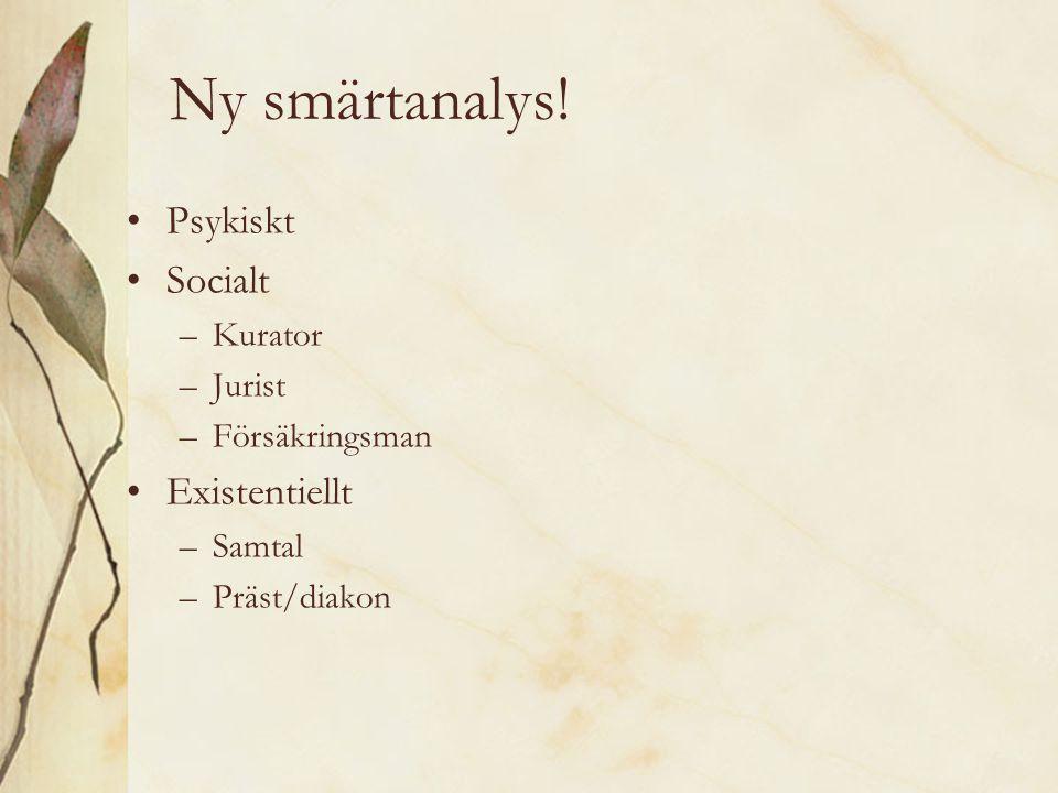 Ny smärtanalys! Psykiskt Socialt –Kurator –Jurist –Försäkringsman Existentiellt –Samtal –Präst/diakon