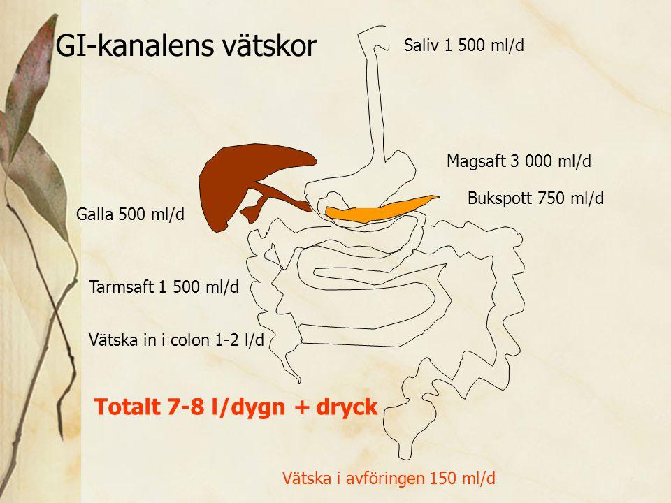 Saliv 1 500 ml/d Magsaft 3 000 ml/d Bukspott 750 ml/d Galla 500 ml/d Tarmsaft 1 500 ml/d Totalt 7-8 l/dygn + dryck Vätska in i colon 1-2 l/d Vätska i