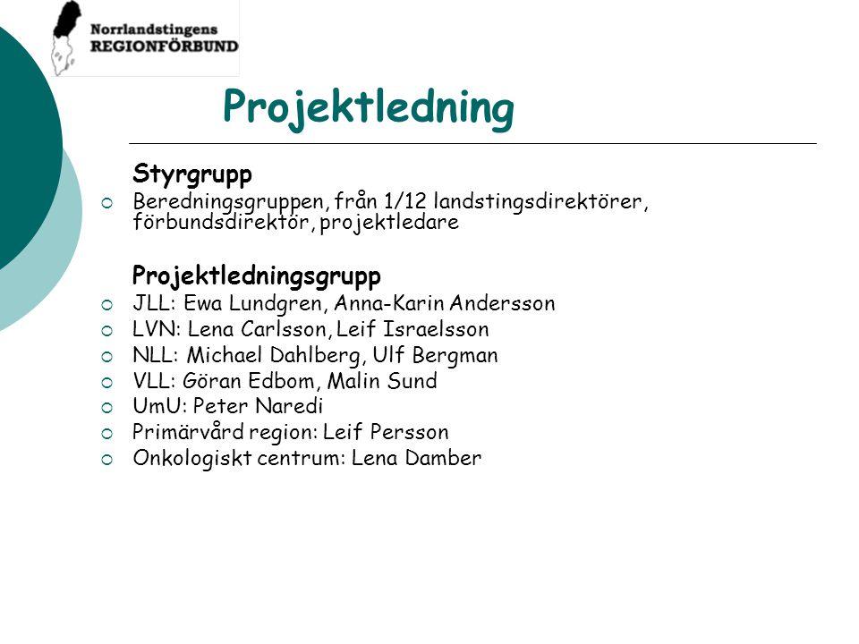 Projektledning Styrgrupp  Beredningsgruppen, från 1/12 landstingsdirektörer, förbundsdirektör, projektledare Projektledningsgrupp  JLL: Ewa Lundgren