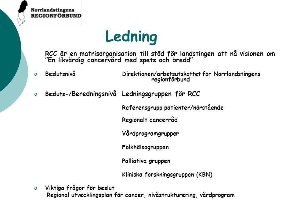 """Ledning RCC är en matrisorganisation till stöd för landstingen att nå visionen om """"En likvärdig cancervård med spets och bredd"""" oBeslutsnivåDirektione"""