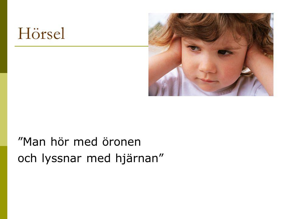 Hörselnedsättningar Indelas i  Ledningshinder = orsak i ytteröra, mellanöra  Sensorineural (nervskadetyp) = orsak i snäcka, hörselnerv, hörselbanor