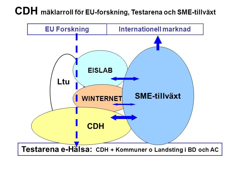 Testarena e-Hälsa: CDH + Kommuner o Landsting i BD och AC Ltu EISLAB WINTERNET CDH SME-tillväxt EU ForskningInternationell marknad CDH mäklarroll för