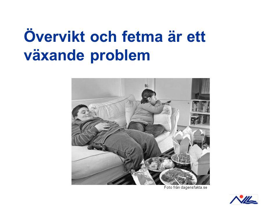 Övervikt och fetma är ett växande problem Foto från dagensfakta.se