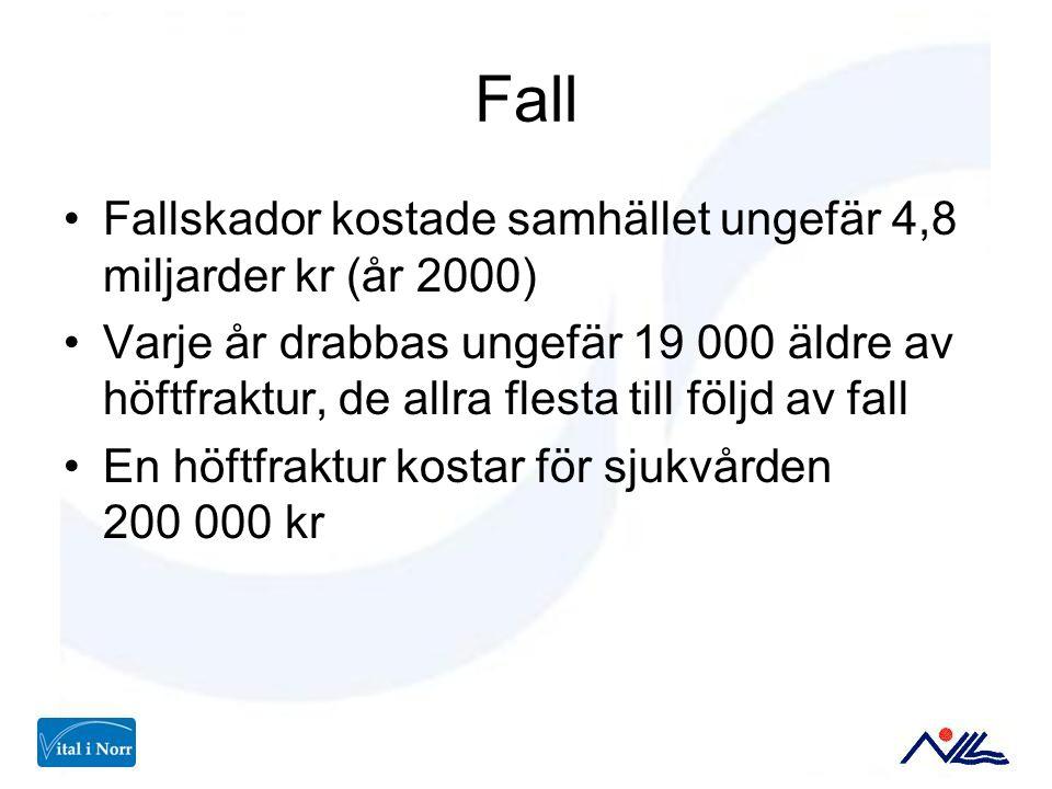 Fall Fallskador kostade samhället ungefär 4,8 miljarder kr (år 2000) Varje år drabbas ungefär 19 000 äldre av höftfraktur, de allra flesta till följd