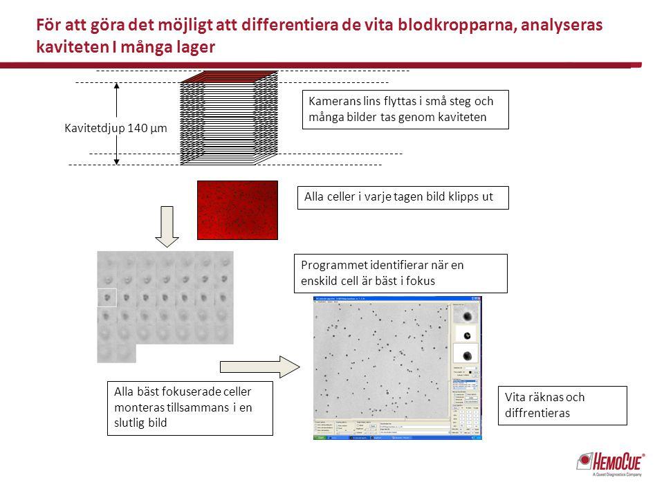 Vita räknas och diffrentieras Programmet identifierar när en enskild cell är bäst i fokus Alla bäst fokuserade celler monteras tillsammans i en slutli