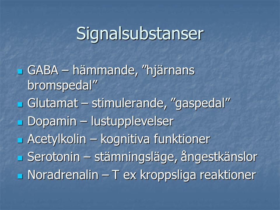 """Signalsubstanser GABA – hämmande, """"hjärnans bromspedal"""" GABA – hämmande, """"hjärnans bromspedal"""" Glutamat – stimulerande, """"gaspedal"""" Glutamat – stimuler"""