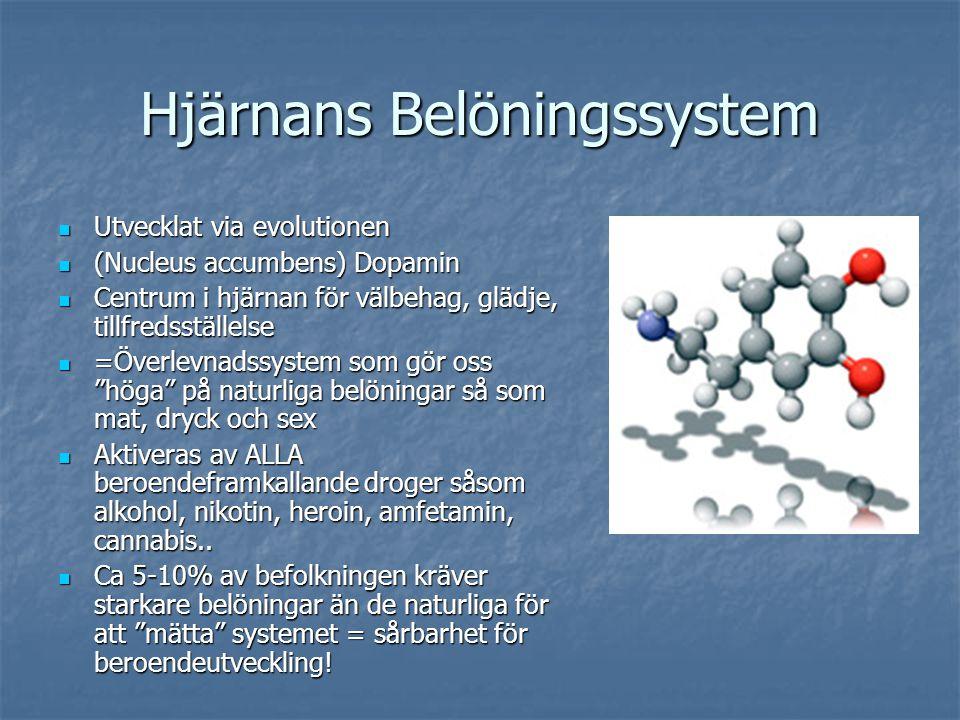 Utvecklat via evolutionen Utvecklat via evolutionen (Nucleus accumbens) Dopamin (Nucleus accumbens) Dopamin Centrum i hjärnan för välbehag, glädje, ti
