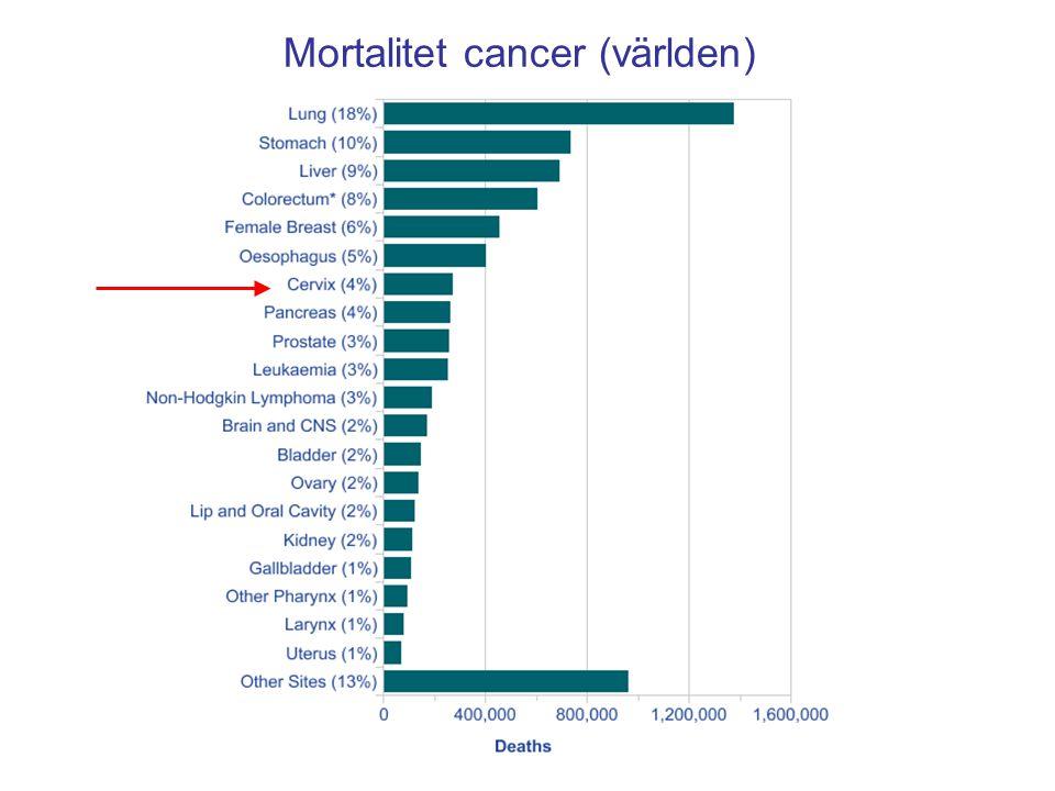 Mortalitet cancer (världen)