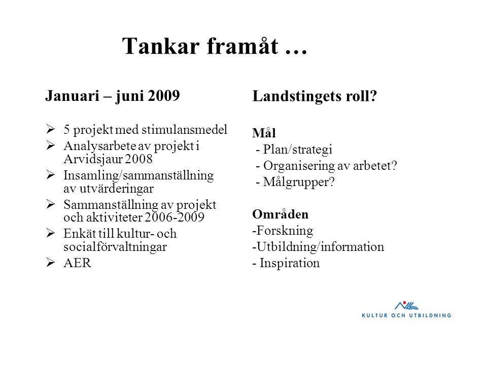 Tankar framåt … Januari – juni 2009  5 projekt med stimulansmedel  Analysarbete av projekt i Arvidsjaur 2008  Insamling/sammanställning av utvärder
