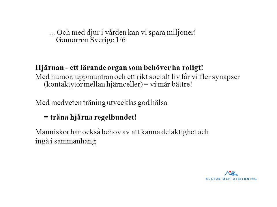 ... Och med djur i vården kan vi spara miljoner! Gomorron Sverige 1/6 Hjärnan - ett lärande organ som behöver ha roligt! Med humor, uppmuntran och ett