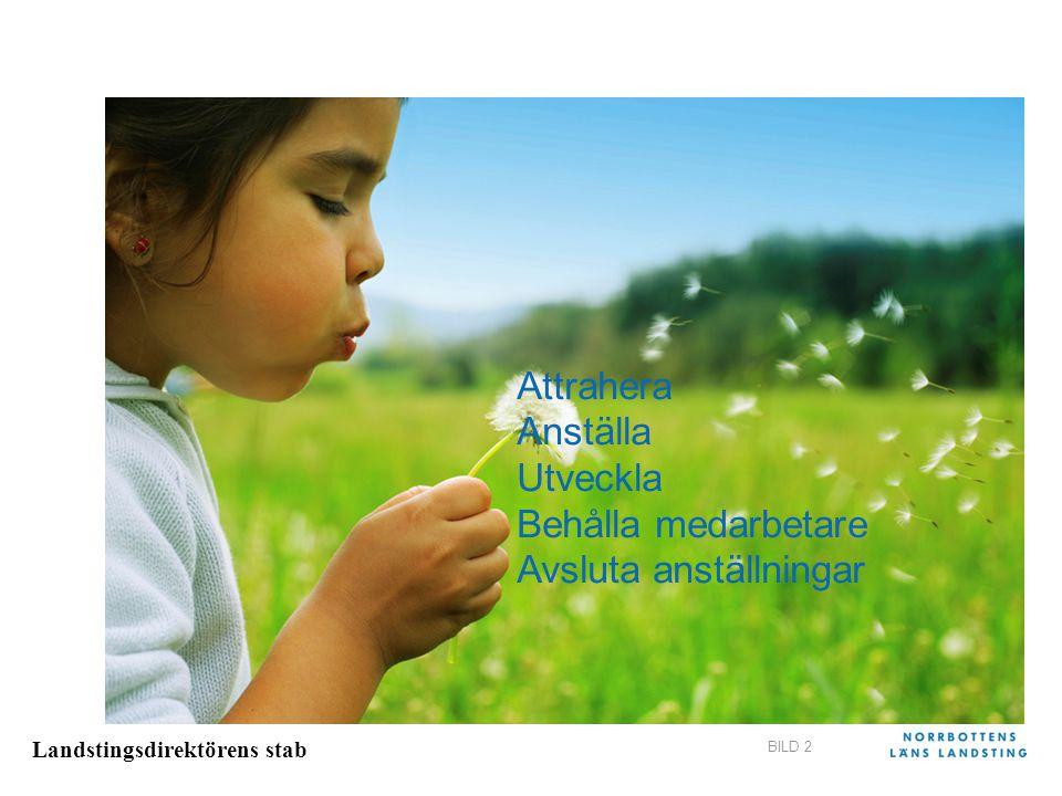 Landstingsdirektörens stab BILD 2 Attrahera Anställa Utveckla Behålla medarbetare Avsluta anställningar