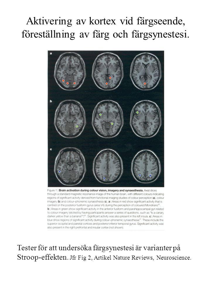 Aktivering av kortex vid färgseende, föreställning av färg och färgsynestesi. Tester för att undersöka färgsynestesi är varianter på Stroop-effekten.