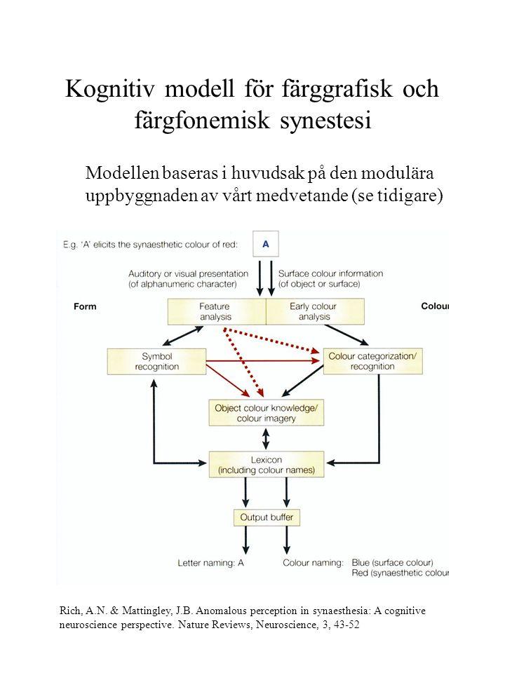 Kognitiv modell för färggrafisk och färgfonemisk synestesi Modellen baseras i huvudsak på den modulära uppbyggnaden av vårt medvetande (se tidigare) R
