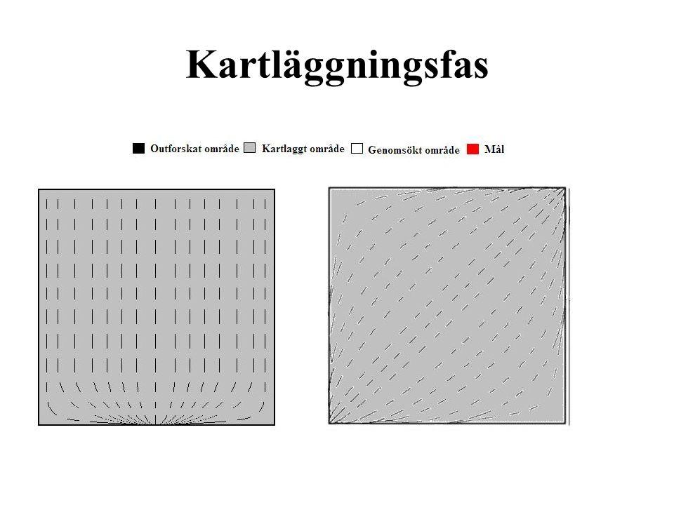 Kartläggningsfas