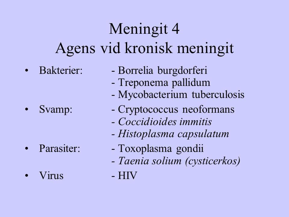 Meningit 4 Agens vid kronisk meningit Bakterier:- Borrelia burgdorferi - Treponema pallidum - Mycobacterium tuberculosis Svamp:- Cryptococcus neoforma