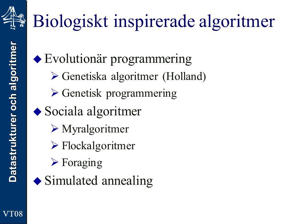 Datastrukturer och algoritmer VT08 Biologiskt inspirerade algoritmer  Evolutionär programmering  Genetiska algoritmer (Holland)  Genetisk programmering  Sociala algoritmer  Myralgoritmer  Flockalgoritmer  Foraging  Simulated annealing