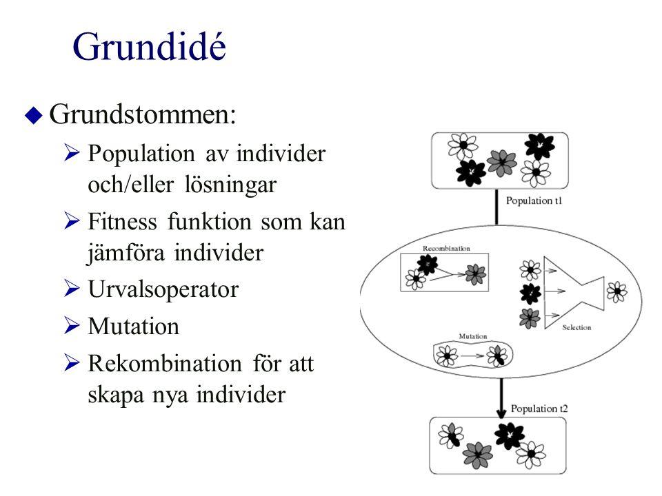 Grundidé  Grundstommen:  Population av individer och/eller lösningar  Fitness funktion som kan jämföra individer  Urvalsoperator  Mutation  Rekombination för att skapa nya individer