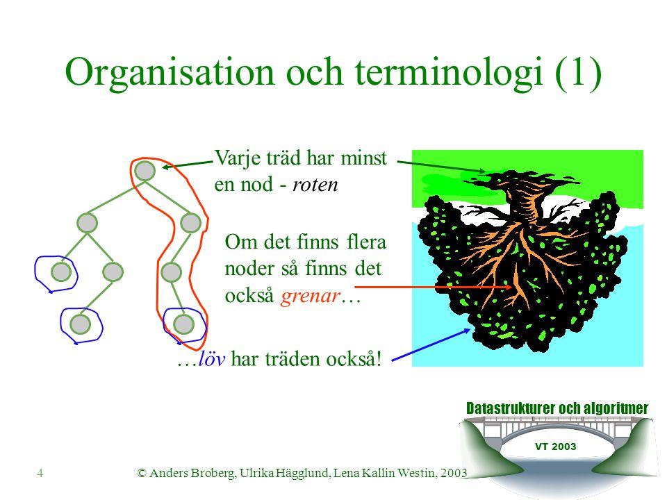 Datastrukturer och algoritmer VT 2003 4© Anders Broberg, Ulrika Hägglund, Lena Kallin Westin, 2003 Organisation och terminologi (1) Varje träd har minst en nod - roten Om det finns flera noder så finns det också grenar… …löv har träden också!