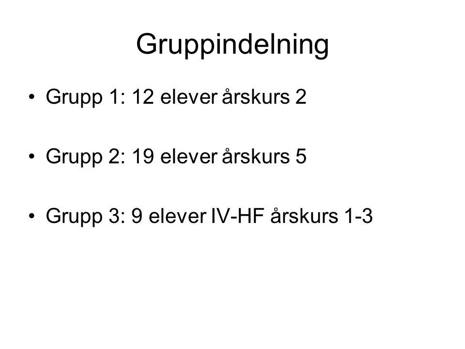 Gruppindelning Grupp 1: 12 elever årskurs 2 Grupp 2: 19 elever årskurs 5 Grupp 3: 9 elever IV-HF årskurs 1-3