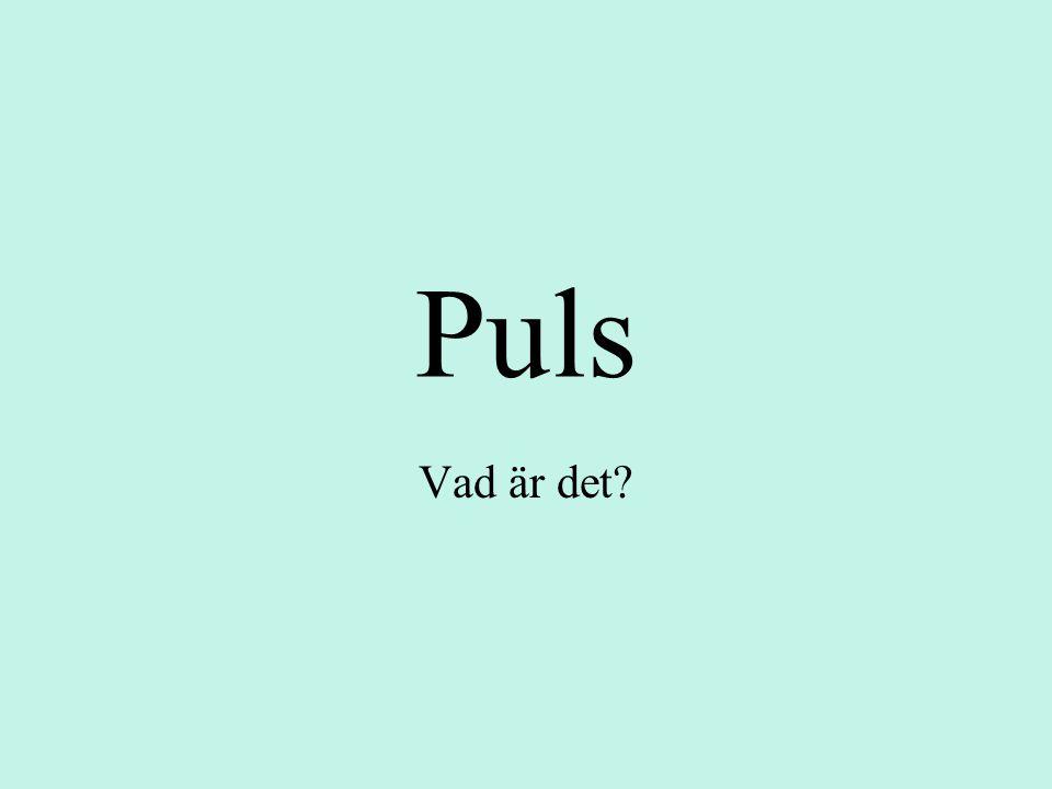 Puls Vad är det?