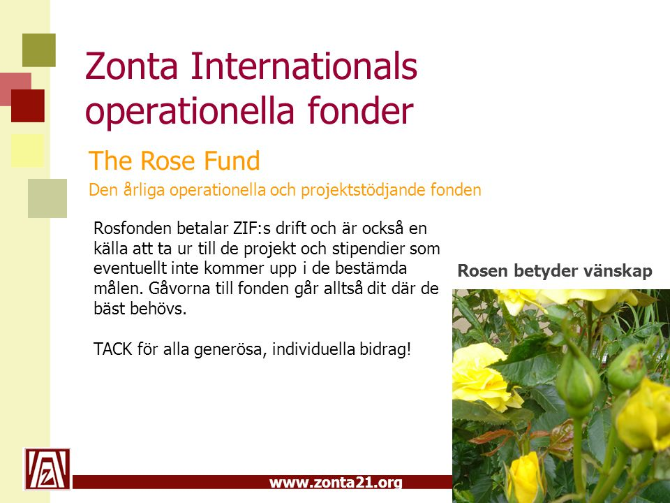 www.zonta21.org Zonta Internationals operationella fonder The Rose Fund Den årliga operationella och projektstödjande fonden Rosen betyder vänskap Ros