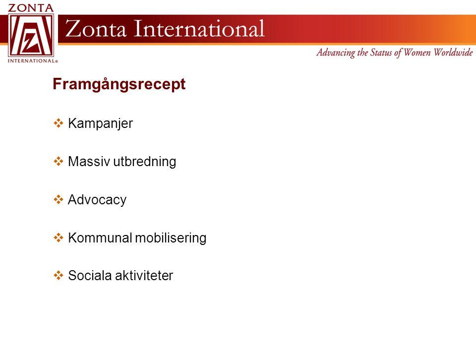 Framgångsrecept  Kampanjer  Massiv utbredning  Advocacy  Kommunal mobilisering  Sociala aktiviteter