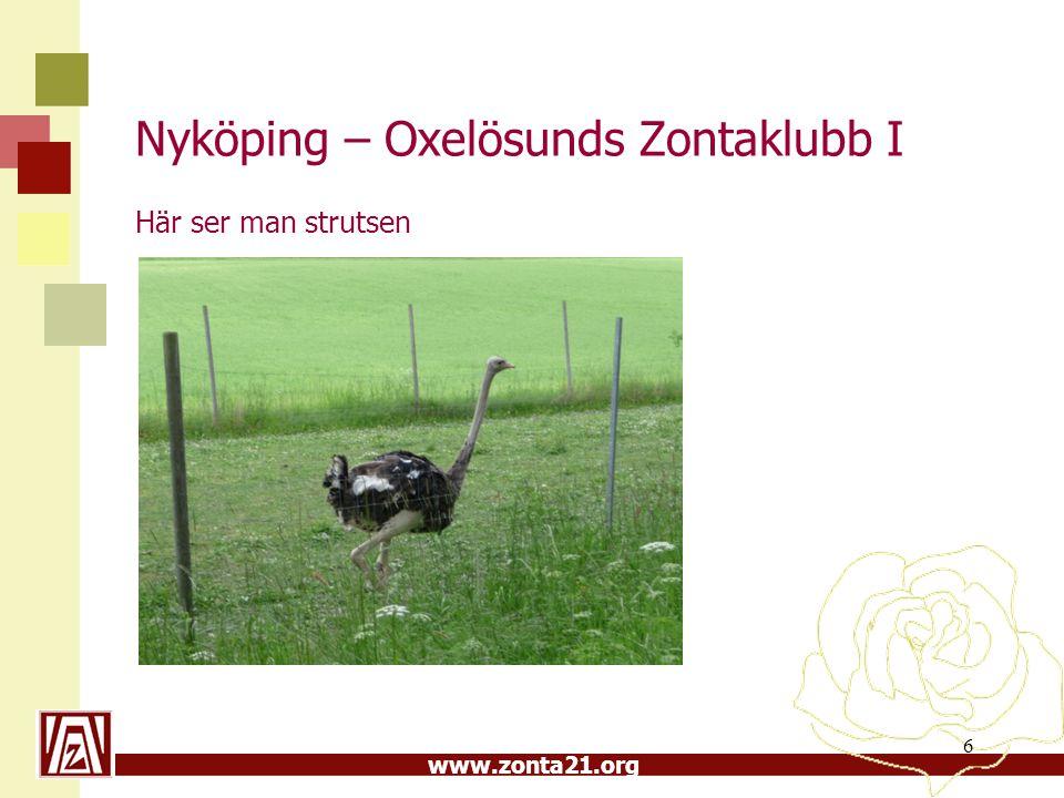 www.zonta21.org Nyköping – Oxelösunds Zontaklubb I Här ser man strutsen 6