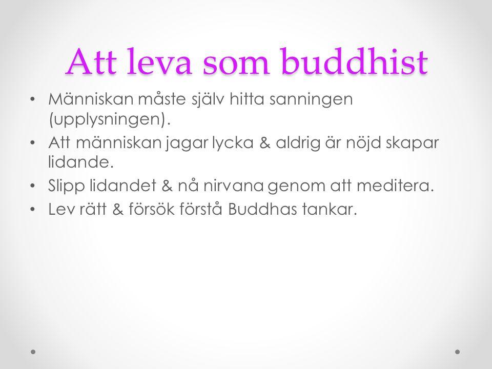 Att leva som buddhist Människan måste själv hitta sanningen (upplysningen). Att människan jagar lycka & aldrig är nöjd skapar lidande. Slipp lidandet