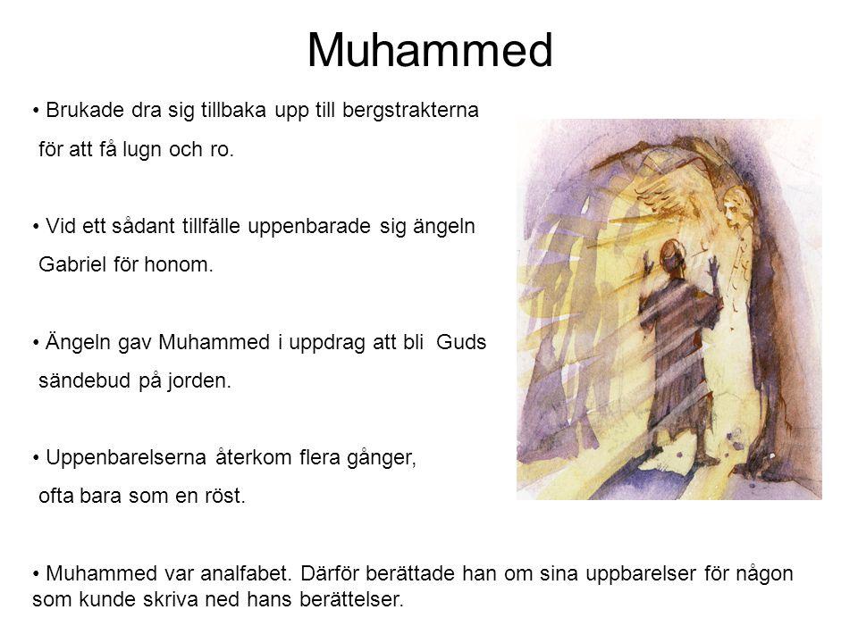 Muhammed Brukade dra sig tillbaka upp till bergstrakterna för att få lugn och ro.