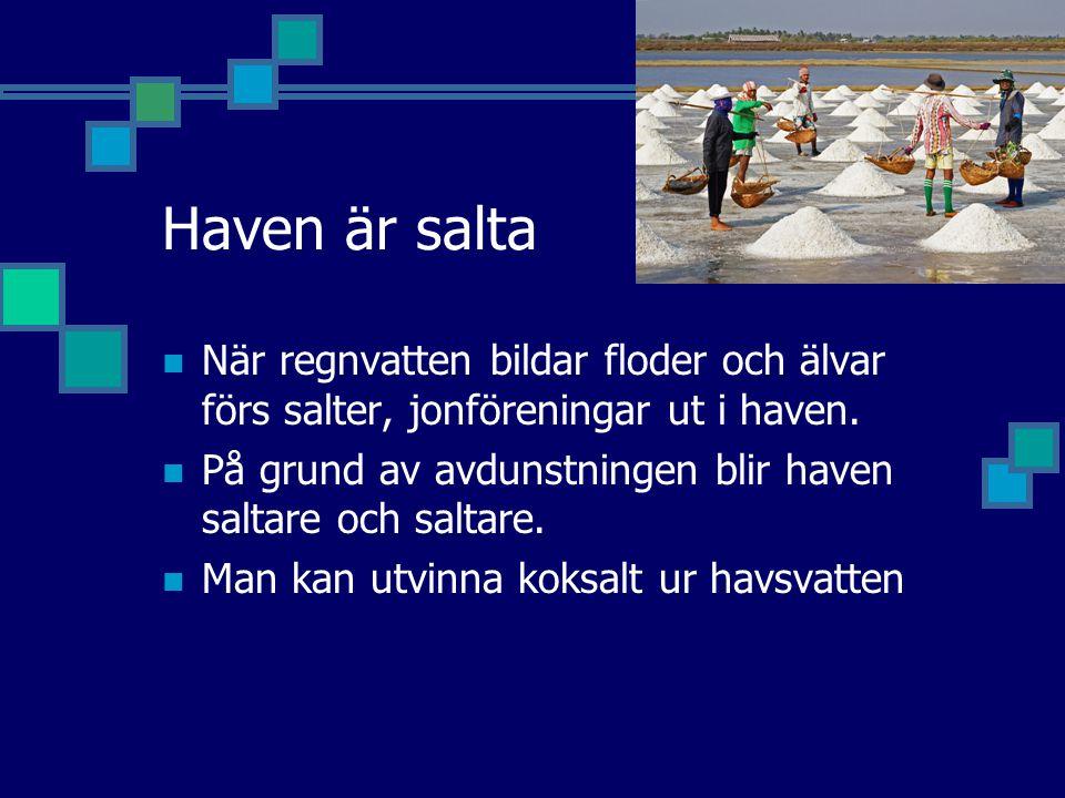Haven är salta När regnvatten bildar floder och älvar förs salter, jonföreningar ut i haven. På grund av avdunstningen blir haven saltare och saltare.