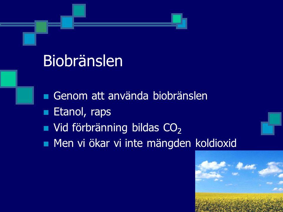 Biobränslen Genom att använda biobränslen Etanol, raps Vid förbränning bildas CO 2 Men vi ökar vi inte mängden koldioxid