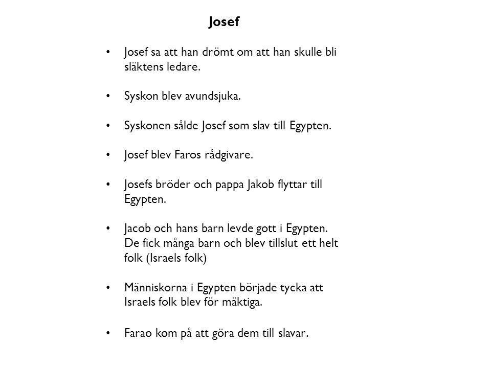 Josef Josef sa att han drömt om att han skulle bli släktens ledare. Syskon blev avundsjuka. Syskonen sålde Josef som slav till Egypten. Josef blev Far