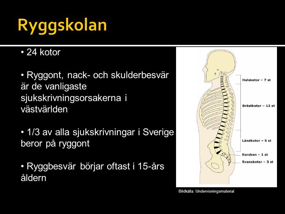 24 kotor Ryggont, nack- och skulderbesvär är de vanligaste sjukskrivningsorsakerna i västvärlden 1/3 av alla sjukskrivningar i Sverige beror på ryggont Ryggbesvär börjar oftast i 15-års åldern Bildkälla: Undervisningsmaterial