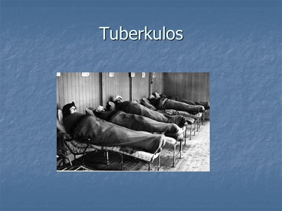 Tuberkulos