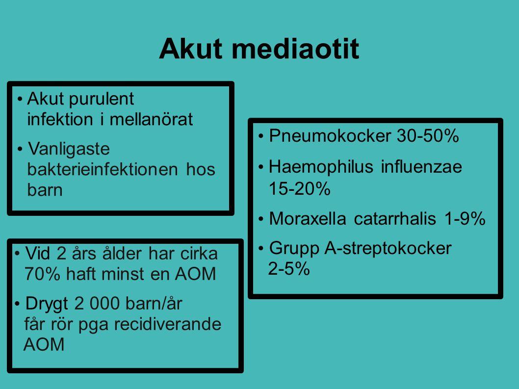 Akut mediaotit Akut purulent infektion i mellanörat Vanligaste bakterieinfektionen hos barn Vid 2 års ålder har cirka 70% haft minst en AOM Drygt 2 00