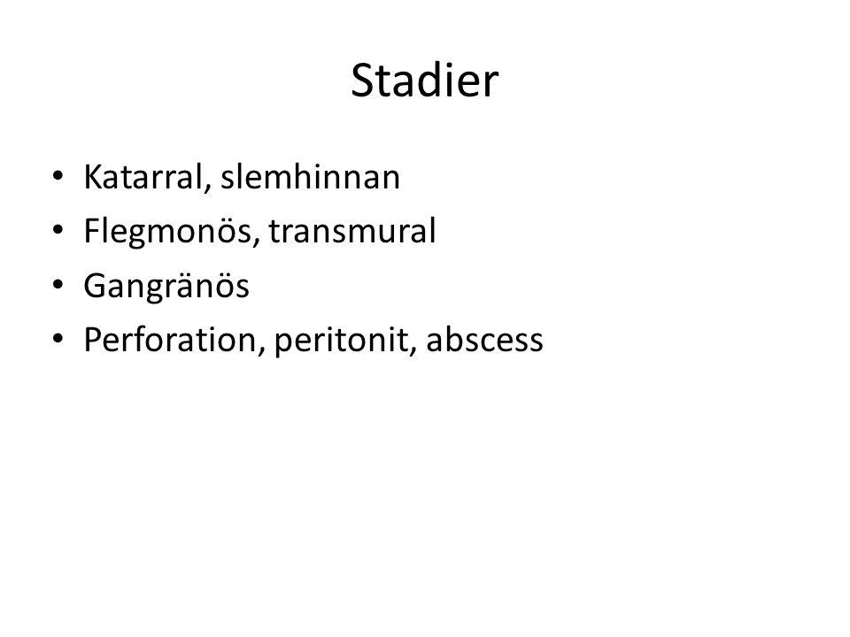 Stadier Katarral, slemhinnan Flegmonös, transmural Gangränös Perforation, peritonit, abscess