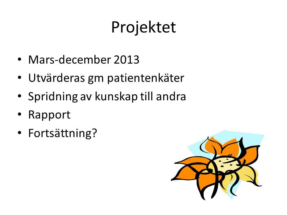 Projektet Mars-december 2013 Utvärderas gm patientenkäter Spridning av kunskap till andra Rapport Fortsättning?