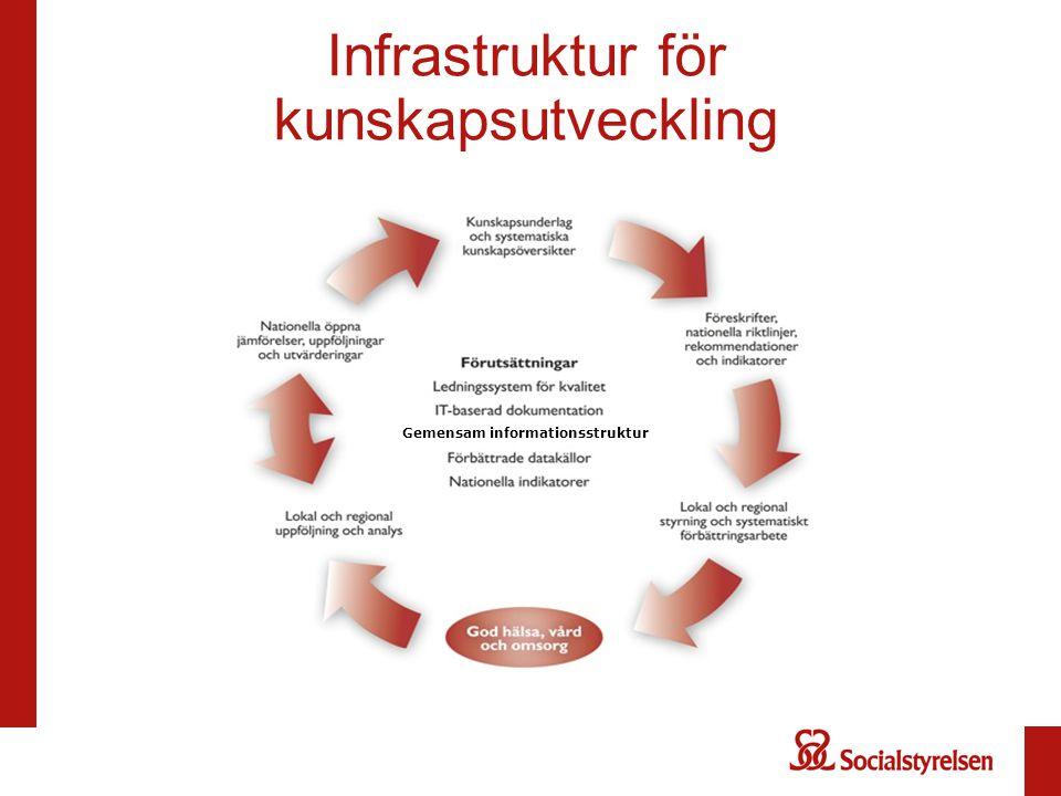 Infrastruktur för kunskapsutveckling Gemensam informationsstruktur