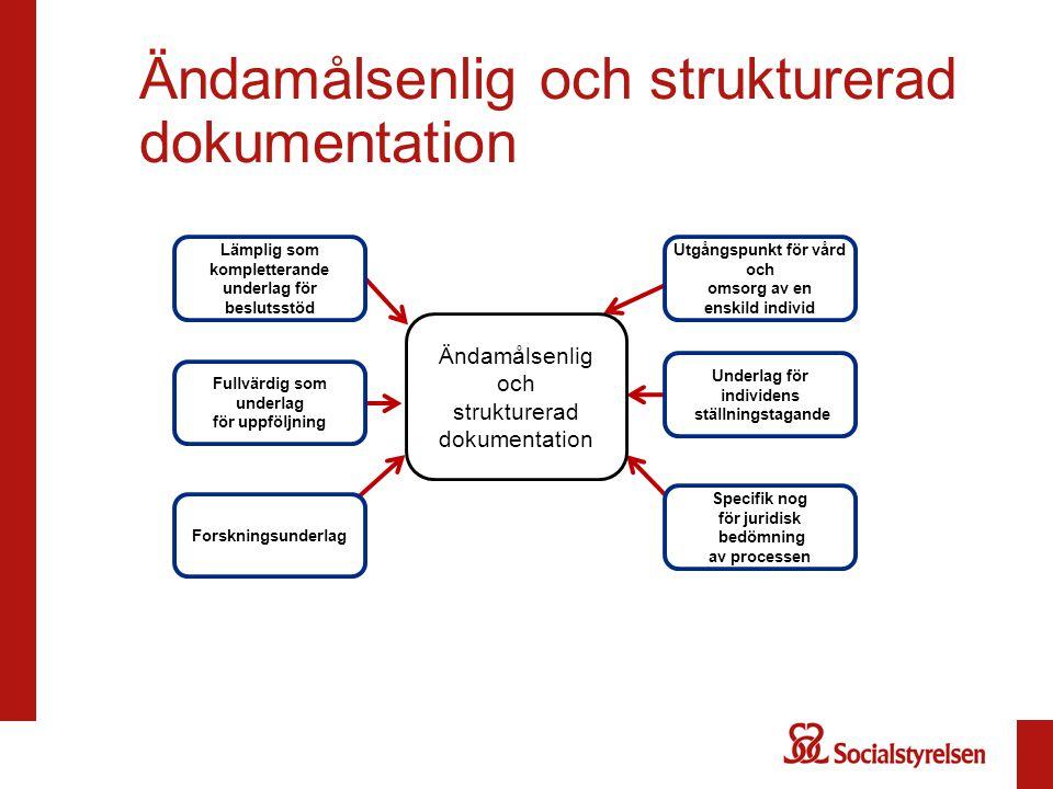 Ändamålsenlig och strukturerad dokumentation Forskningsunderlag Fullvärdig som underlag för uppföljning Lämplig som kompletterande underlag för beslut