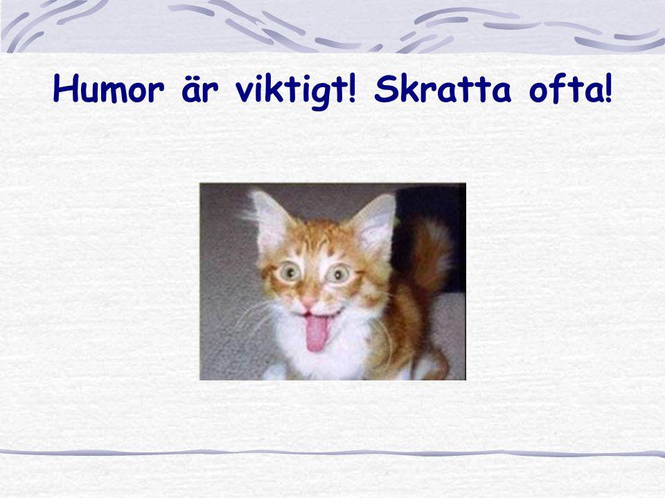 Humor är viktigt! Skratta ofta!